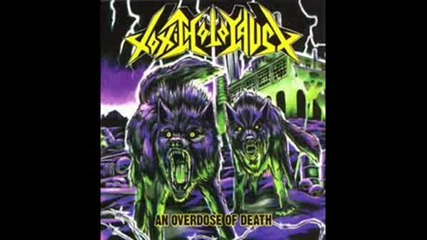 Toxic Holocaust - Endless Armageddon