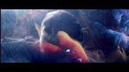 Аrmin Van Buuren - Love Never Came + Превод!