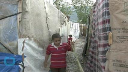 U.N. Agency Urges Truce in Syria Fighting During Harvesting