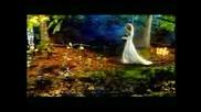 Тайната градина - Nocturne