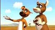 Дивите кучета - Кой е тариката?