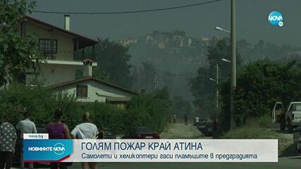 Голям пожар унищожи къщи и борова гора в предградие на Атина
