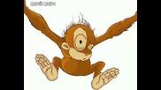 Kiss - The Monkey Kiss - Video