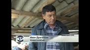 Заради качеството на месото все повече българи купуват агнешко направо от производител