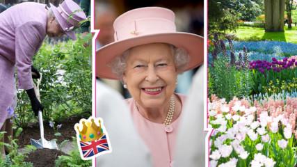 Вижте в какви разкошни градини се разхожда Елизабет II