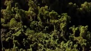 Karunesh - Breathing Silence (nature)