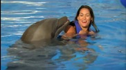 The Divas go swimming with dolphins Total Divas, May 18, 2014