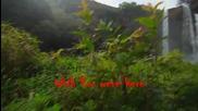 /prevod / Buddha Bar feat. Bliss ~ Wish you were here
