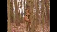 Pitbull - Хапе Дърво
