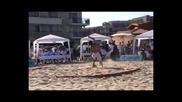 Световно по плажна борба до 85кг (николай Станчев) - Обзор