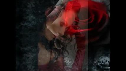 *превод* Evanescence - Never Go Back