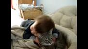 бебе лигави котка
