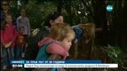 Рядък вид хипопотам се роди в зоопарка в Мелбърн