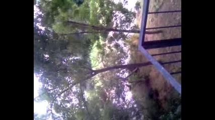 Video0161