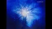 Fiona Joy Hawkins - Blue Dream