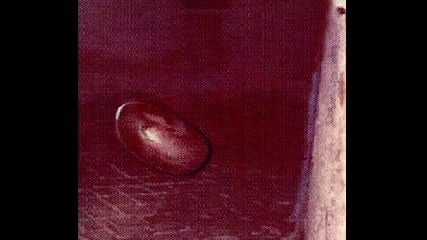 Снимки На Извънземни