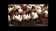 Световно Постижение за България 333 гайди звучаха за рекорд на гинес -- Guinness World Records 2012