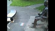 Куче се опитва да накара статуя да му хвърли пръчката - (смях)