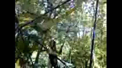 28 - 07 - 07 1716 Окатай - скача на бънджи във Варна