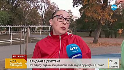 Вандали в действие: Кой повреди първата специализирана люлка за деца с увреждания в София?