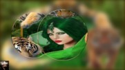 Проект - styles, transitions - Ekaterina Shavrina