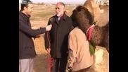 Камилата провали интервюто...