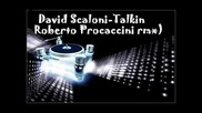 David Scaloni - talkin (roberto Procaccini remix)