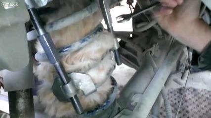 Руснаци спасяват котка заклещила се в пружина