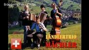 Landler Trio Machler - Braggerhofler - Chilbi