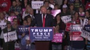 USA: 'Cancel the election' and give it to me – Trump at rally in Toledo, OH