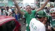 Brazil: Fans jubilant as Palmeiras win championship