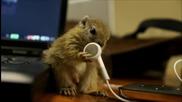 Бебе Катериче гризе слушалки .. Сладур ..