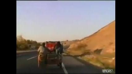 Бързи и Яростни 6 - Let's Go за Овци