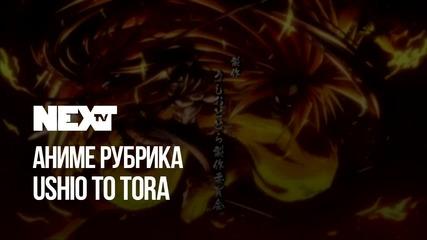 NEXTTV 050: Аниме Рубрика: Ushio To Tora