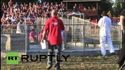 Canada: See HOG-wrestling Quebecois grapple swine at Festival of Pigs 2015