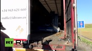 France: Calais migrants attempt to sneak onto lorries as Eurotunnel service resumes