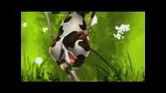 Луда крава се прави на рапър!:D