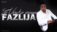 Fazlija - 2015 - Za unuka moga (hq) (bg sub)