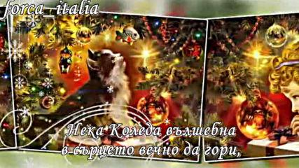 Вълшебна Бяла Коледа