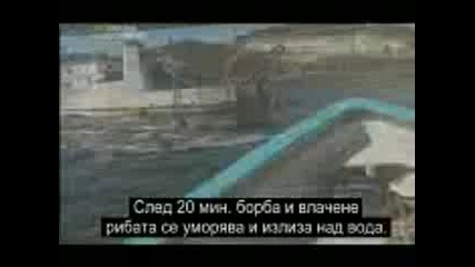 National Geographic - Ultimate Shark Part 4