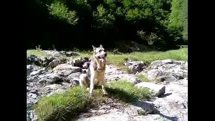 video - Майкьл на реката