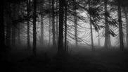 Maglor - Skoger av Doden