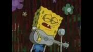 Spongebob - Pics
