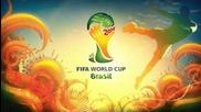 Dame - Weltmeisterschaft Special 2014