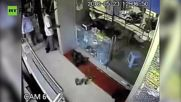 Monkey Robs Jewellery Store in Unbelievable Heist