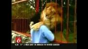 Голяма прегръдка на човек и лъв