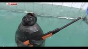 Невероятно: Тюлени от спецназа в Иркутск представиха военно-патриотична програма за 9 май