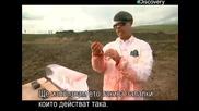 Ловци на митове - Термит срещу Лед - с Бг превод