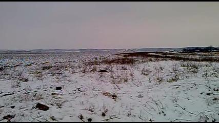Лов на лисица в с.дългоделци 30.01.2011