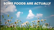 11 foods you didn't know grew like that